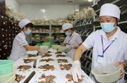 Hà Nội 'ra quân' kiểm tra các nhà thuốc bệnh viện