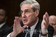 Không có chuyện Tổng thống Trump định sa thải Công tố viên Mueller