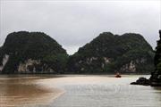 Nhân ngày Nước Thế giới 2018- Bài 1: Chất lượng nước tại Vịnh Hạ Long chịu nhiều sức ép