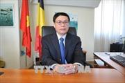 Đại sứ Vũ Anh Quang: Quan hệ thương mại Việt Nam-EU đạt dấu mốc quan trọng