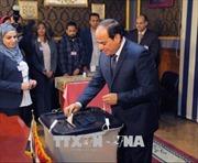 Bầu cử Tổng thống Ai Cập: Đương kim Tổng thống al-Sisi chiến thắng áp đảo