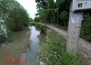 Sạt lở kênh Chợ Gạo: Dân 'nơm nớp' lo nhà cửa cuốn trôi theo hà bá