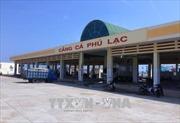 Phú Yên: Nhiều bất cập trong việc thuê mặt bằng Cảng cá Phú Lạc
