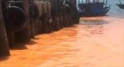 Vệt nước màu vàng hồng trên biển Quảng Bình do xác vi sinh vật phân hủy