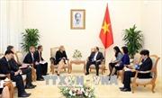 IFC mong muốn hỗ trợ Việt Nam thúc đẩy khởi nghiệp