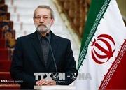 Chủ tịch Quốc hội Cộng hòa Hồi giáo Iran bắt đầu thăm chính thức Việt Nam