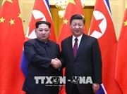 Báo Nhật: Triều Tiên, Trung Quốc thảo luận về chuyến thăm Bình Nhưỡng của Chủ tịch Tập Cận Bình