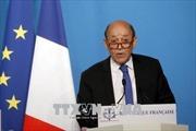 Pháp hối thúc Syria cho phép các thanh sát viên OPCW tiếp cận hiện trường Douma