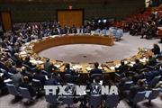 HĐBA LHQ họp không chính thức tại Thụy Điển về tình hình Syria