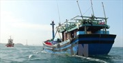 EC xem xét 'thẻ vàng' với thủy sản Việt Nam trong tháng 5/2018