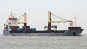 Cướp biển bắt cóc 12 thành viên tàu chở hàng Hà Lan