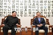 Đức, Canada và Indonesia hoan nghênh kết quả hội nghị thượng đỉnh liên Triều