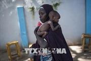 LHQ kêu gọi viện trợ khẩn cấp cho khu vực Sahel đối phó với nạn đói