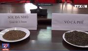 Chính thức khởi tố với 5 bị can trong vụ vỏ cà phê trộn cát sỏi, lõi pin