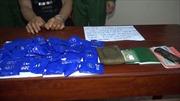 Bắt giữ đối tượng vận chuyển 7.400 viên ma túy tổng hợp từ Lào về Việt Nam