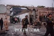 Đánh bom liều chết tại điểm bầu cử trong khuôn viên đền thờ của Afghanistan