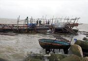 Tàu giã cào bất chấp quy định, hoạt động sai tuyến vẫn diễn ra ở Bình Thuận