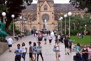 Cảnh báo ngành du lịch tạo ra khoảng 8% lượng khí thải CO2 toàn cầu