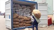 Container chứa hơn 3 tấn vẩy tê tê 'ngụy trang' là bao hạt điều