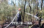 Dập tắt đám cháy tại rừng phòng hộ ven biển Quảng Nam