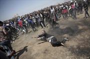 Thế giới tuần qua: Thượng đỉnh Mỹ-Triều 'chơi vơi', ngày đẫm máu tại Gaza