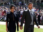 Nhiều ngôi sao xuất hiện tại lễ cưới Hoàng gia Anh