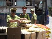 57.600 quả trứng gia cầm, 700 bánh ngọt mác Trung Quốc không chứng từ
