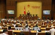 Hôm nay Quốc hội thảo luận dự thảo sửa đổi Luật Tố cáo và Luật Cạnh tranh