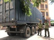 Đã xác định được chủ hàng của 30 tấn than lậu