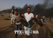 Liên hợp quốc cảnh báo Gaza bên bờ vực chiến tranh