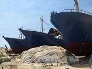 Tàu vỏ thép dịch vụ hậu cần Bình Định 'đắp chiếu', ngư dân lâm nợ