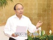Thủ tướng chỉ đạo hoàn thiện các quy định của pháp luật bắt giữ tàu biển