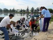 Nỗi lo rác thải nhựa - Bài 2: Cơ sở pháp lý và kinh nghiệm quốc tế