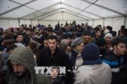 Vấn đề người di cư: Đức công bố dự luật đoàn tụ gia đình gây tranh cãi