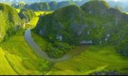 Chiêm ngưỡng bức tranh mùa vàng đẹp nao lòng trên đỉnh Hang Múa