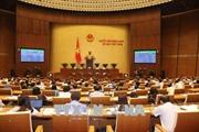 Thông qua dự thảo Nghị quyết về Chương trình xây dựng luật, pháp lệnh năm 2019