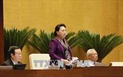 Quốc hội lùi thông qua dự luật về đặc khu và thảo luận hai dự luật về đặc xá, giáo dục