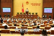Quốc hội thảo luận dự thảo Luật Phòng, chống tham nhũng (sửa đổi)