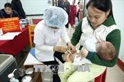 Đang kiểm định vắc xin 5 trong 1 ComBE Five trước khi đưa vào tiêm