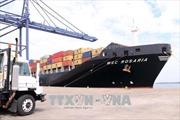 Bà Rịa-Vũng Tàu: Cảng SSIT đón chuyến tàu container đầu tiên