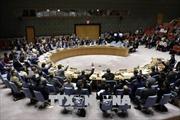 Hội đồng Bảo an LHQ gia hạn sứ mệnh của phái bộ hỗ trợ Iraq