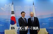 Lãnh đạo Nga, Hàn Quốc cam kết nỗ lực xúc tiến đàm phán FTA