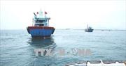 Bến Tre: Phát hiện, xử lý 4 tàu vi phạm trong lĩnh vực khai thác thủy sản