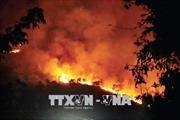 Mỹ: Cháy rừng dữ dội đe dọa nhấn chìm hàng trăm ngôi nhà trong biển lửa