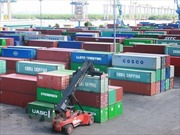 Kiến nghị rà soát hồ sơ về bảo vệ môi trường trong nhập khẩu phế liệu