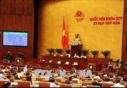 Năm 2019: Quốc hội sẽ giám sát về thực hiện Luật Đất đai