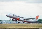 Chim va khiến máy bay Jetstar Pacific phải ở lại sân bay Đồng Hới
