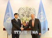 Tổng Thư ký Liên hợp quốc Antonio Guterres đánh giá cao sự hợp tác của Việt Nam