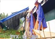 Giông lốc làm sập, tốc mái gần 100 căn nhà ở Cần Thơ