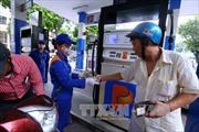 Giá xăng giữ nguyên, giá dầu giảm nhẹ